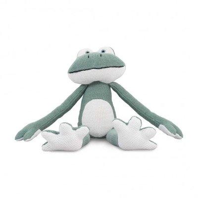 Frog Knuffel